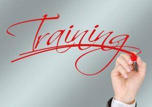 Capital Pricing Consultants, LLC Revenue Management Pricing Sales Team Training